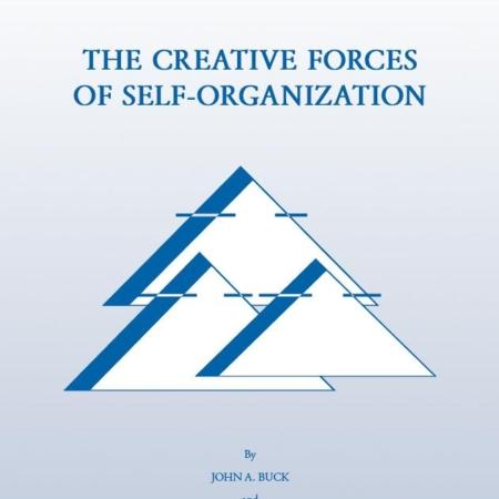 Die kreativen Kräfte der Selbstorganisation