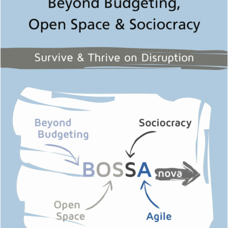 Bildschirmfoto 2018 09 28 um 16.53.44 450x450 - Bossanova - Beyond Budgeting, Open Space & Sociocracy