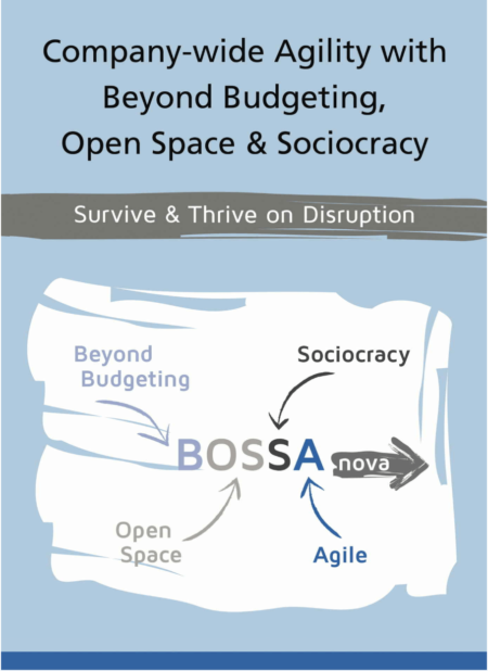 Bossanova - Beyond Budgeting, Open Space & Sociocracy